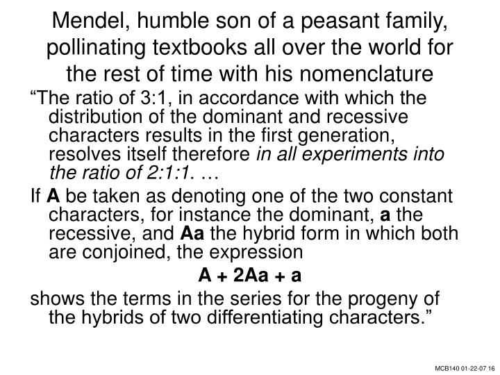 Mendel, humble son of a peasant family, pollinating textbooks all over the world for the rest of time with his nomenclature