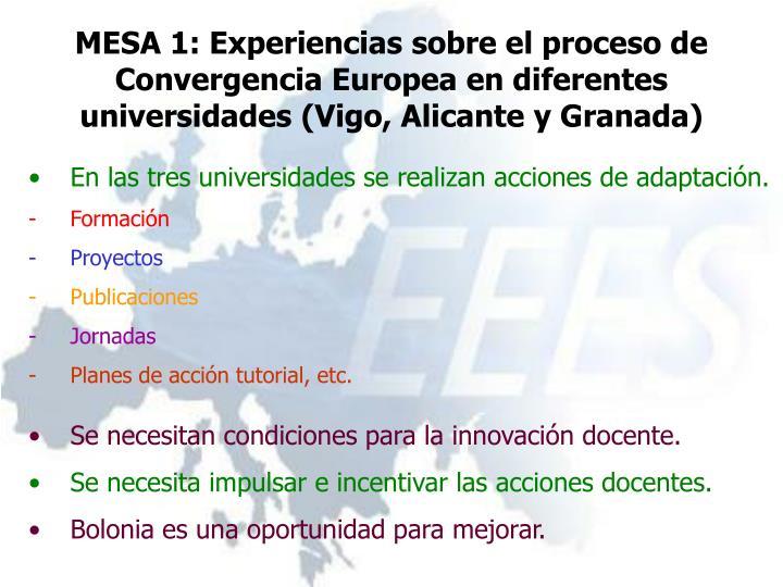 MESA 1: Experiencias sobre el proceso de Convergencia Europea en diferentes universidades (Vigo, Alicante y Granada)