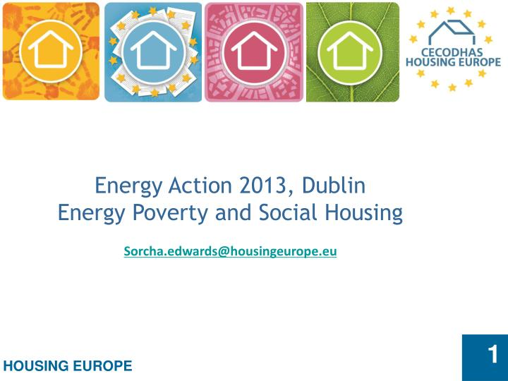 Energy Action 2013, Dublin