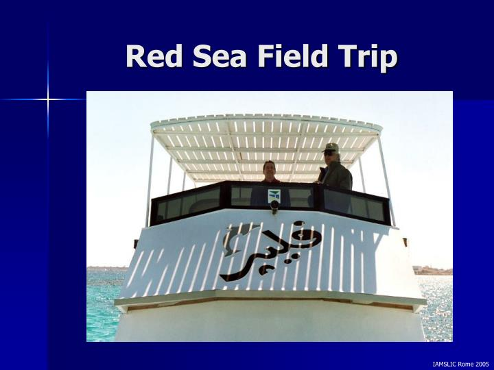 Red Sea Field Trip