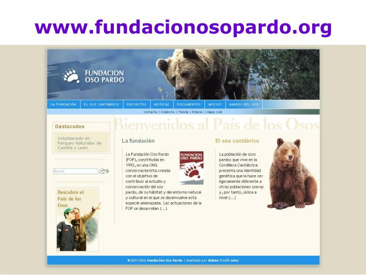 www.fundacionosopardo.org