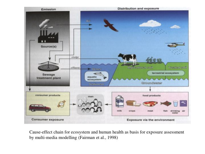 Cause-effect chain for ecosystem and human health as basis for exposure assessment by multi-media mo...