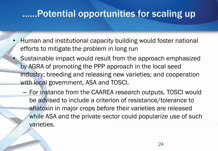 ……Potential opportunities for scaling up