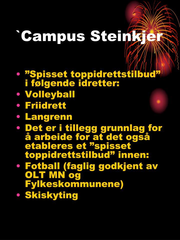 `Campus Steinkjer