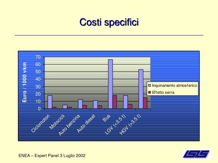 Costi specifici