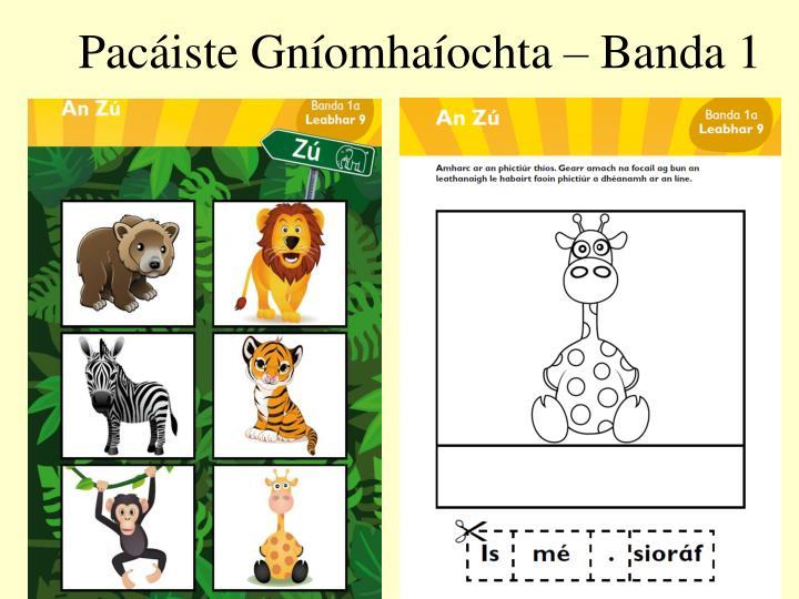 Pacáiste Gníomhaíochta – Banda 1