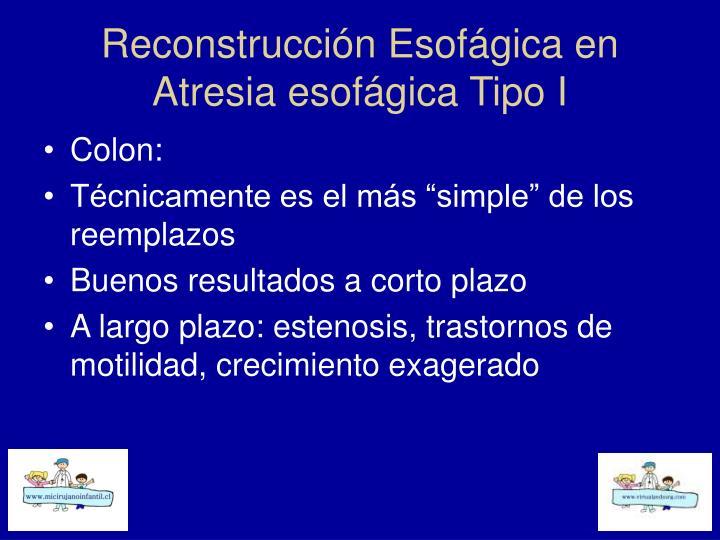 Reconstrucción Esofágica en Atresia esofágica Tipo I