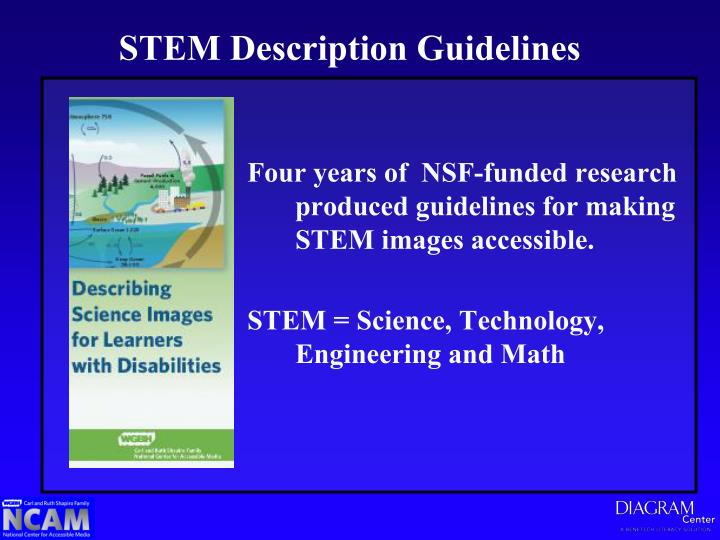 STEM Description Guidelines