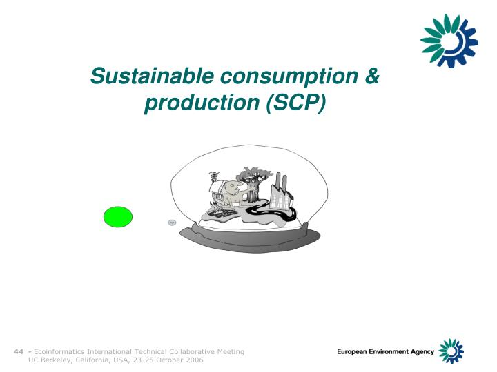 Sustainable consumption & production (SCP)