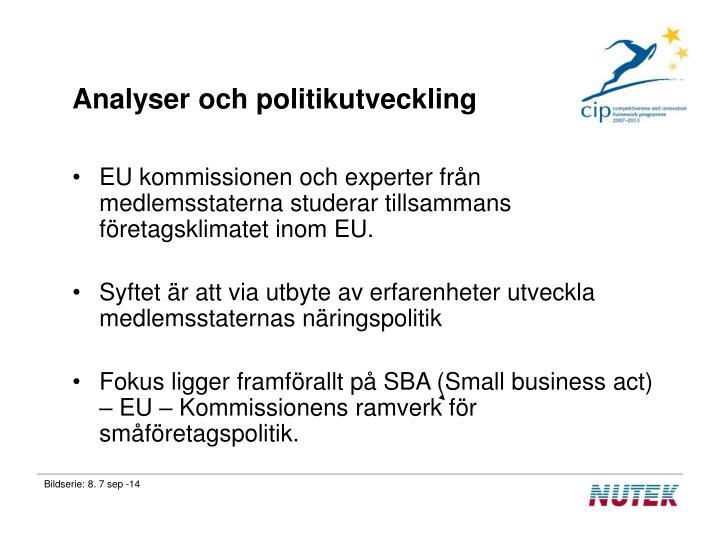 Analyser och politikutveckling
