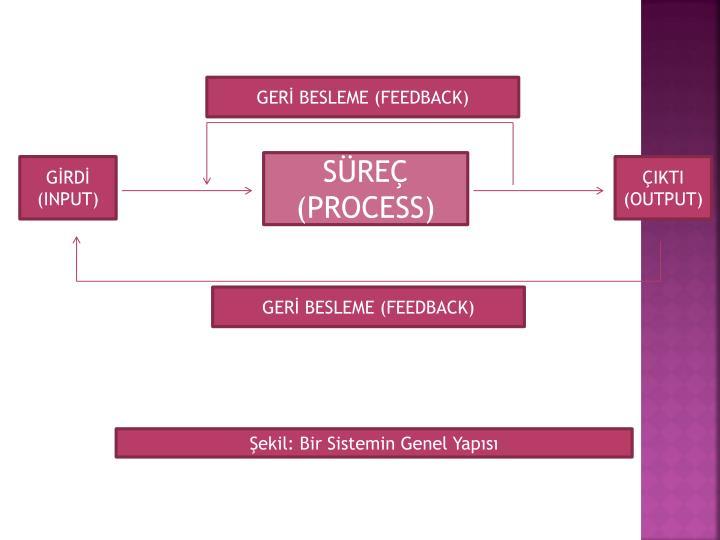 GERİ BESLEME (FEEDBACK)