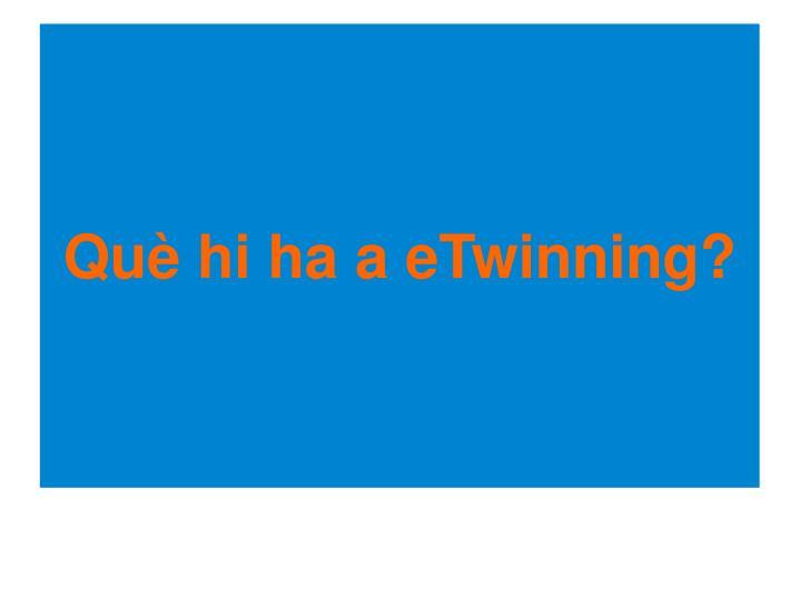 Què hi ha a eTwinning?