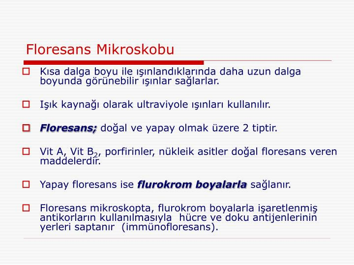 Floresans Mikroskobu