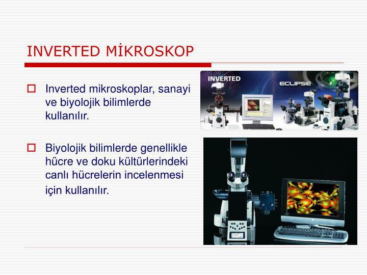 INVERTED MİKROSKOP