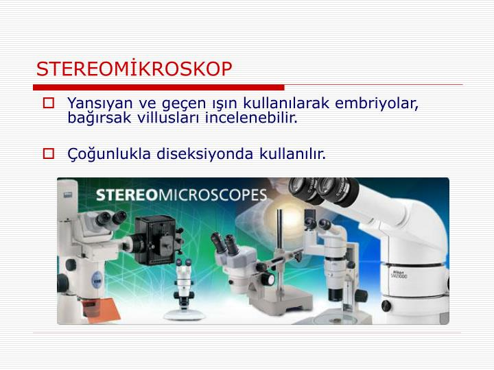 STEREOMİKROSKOP