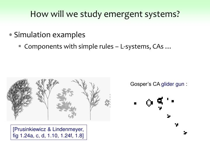 How will we study emergent systems?