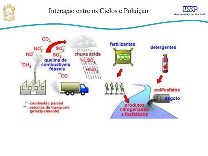 Interação entre os Ciclos e Poluição
