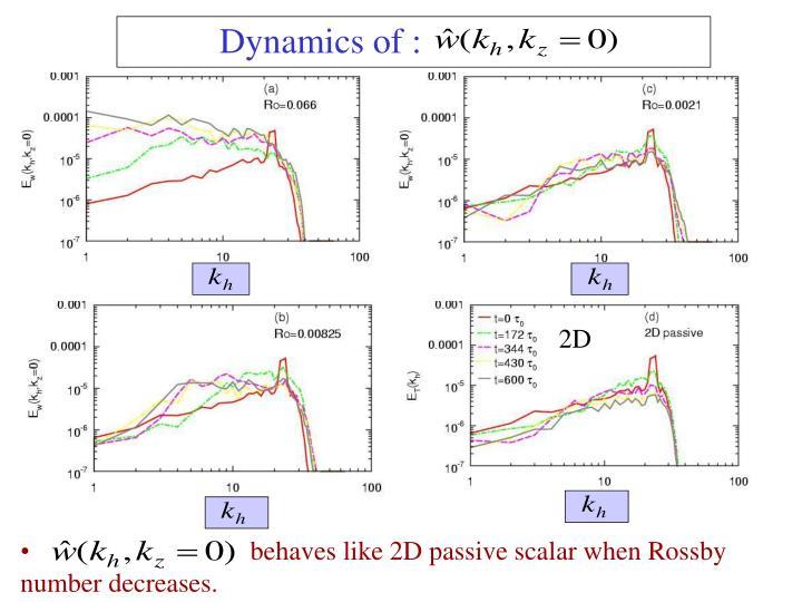 Dynamics of :