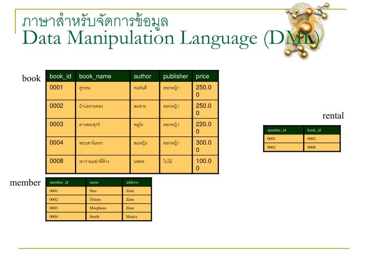 ภาษาสำหรับจัดการข้อมูล