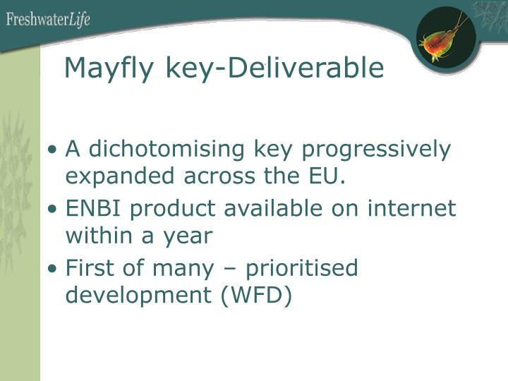 Mayfly key-Deliverable