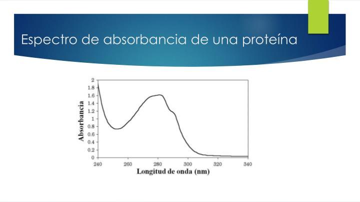 Espectro de absorbancia de una proteína