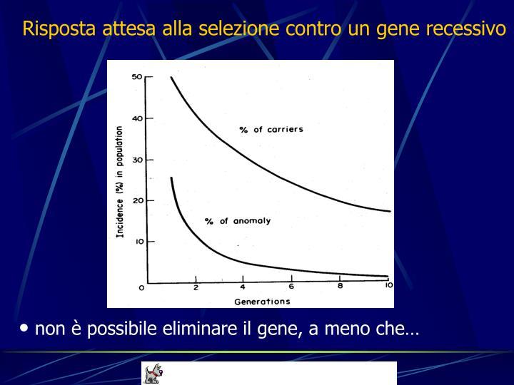 Risposta attesa alla selezione contro un gene recessivo