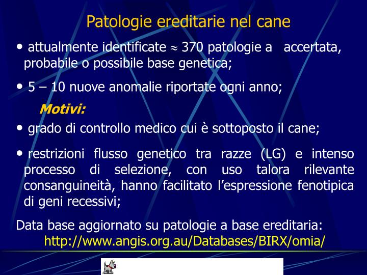 Patologie ereditarie nel cane