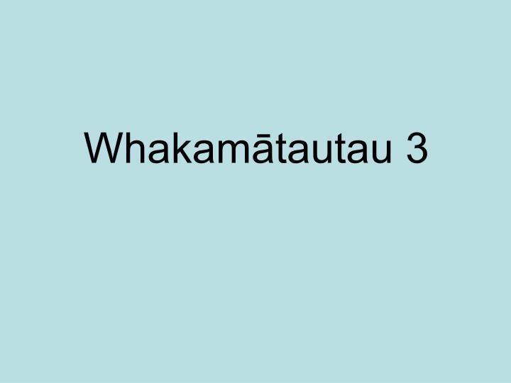 Whakamātautau 3