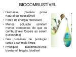 biocombust vel1