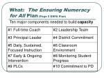 what the ensuring numeracy for all plan page 5 enfa plan