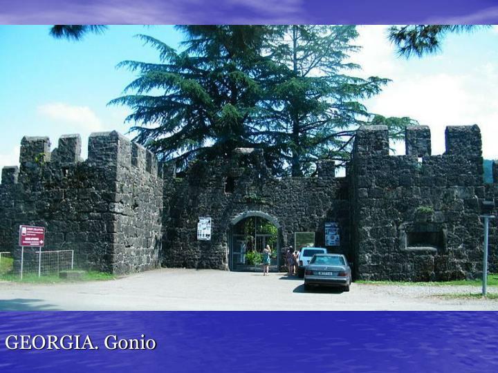 GEORGIA. Gonio
