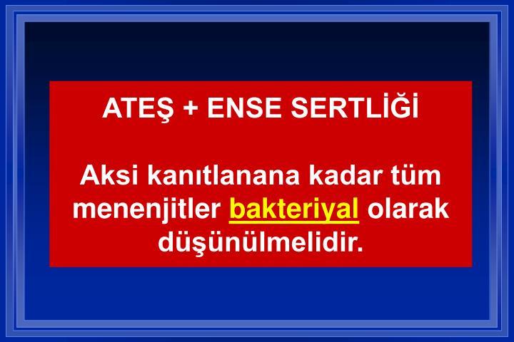 ATEŞ + ENSE SERTLİĞİ