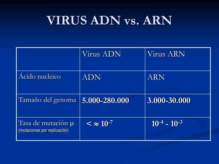 VIRUS ADN vs. ARN