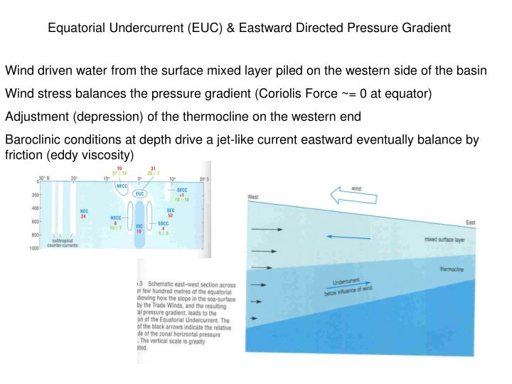 Equatorial Undercurrent (EUC) & Eastward Directed Pressure Gradient
