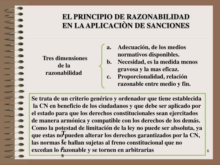 EL PRINCIPIO DE RAZONABILIDAD