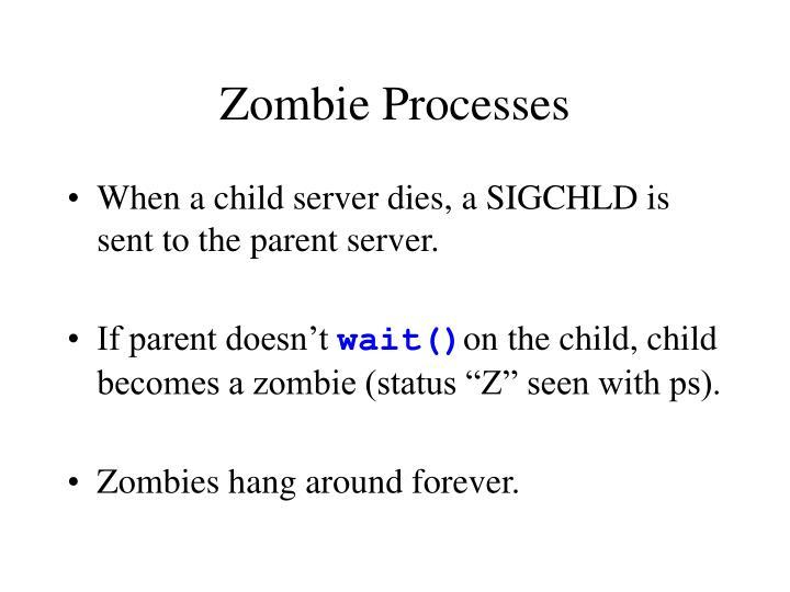 Zombie Processes