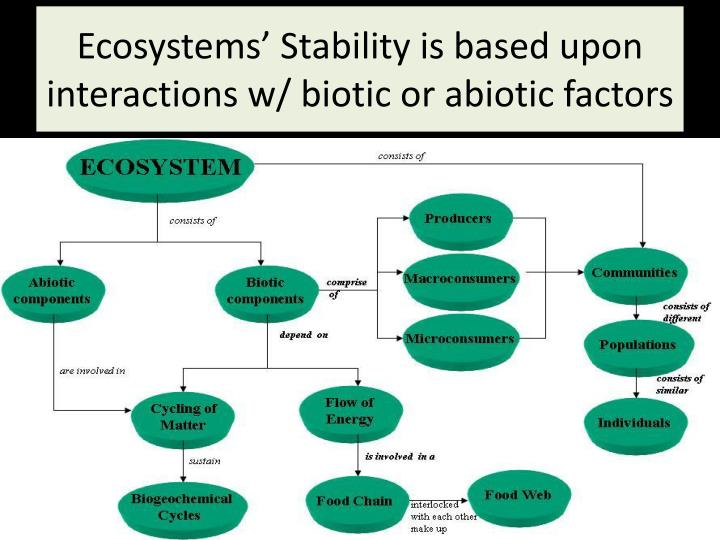 Ecosystems' Stability is based upon interactions w/ biotic or abiotic factors