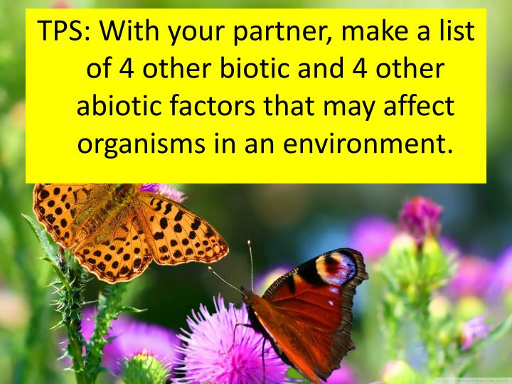 TPS: With your partner, make a list of 4 other biotic and 4 other abiotic factors that may affect organisms in an environment.