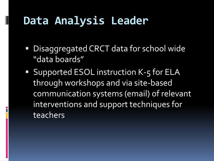 Data Analysis Leader