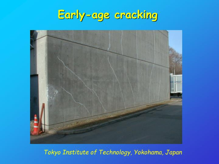Early-age cracking