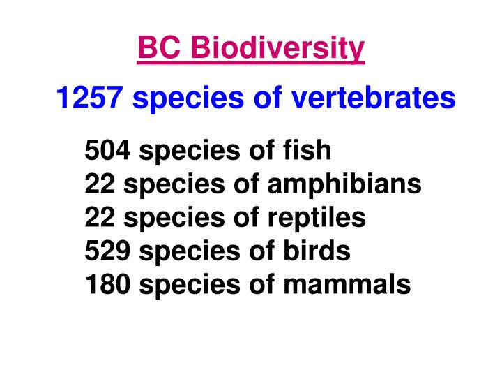 BC Biodiversity