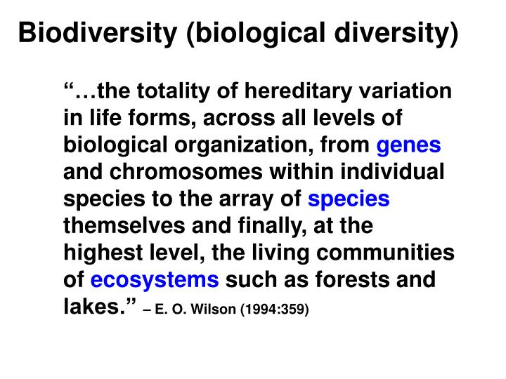 Biodiversity (biological diversity)