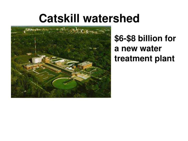 Catskill watershed