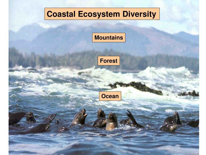 Coastal Ecosystem Diversity