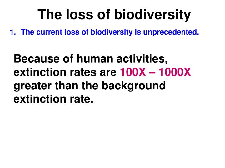 The loss of biodiversity