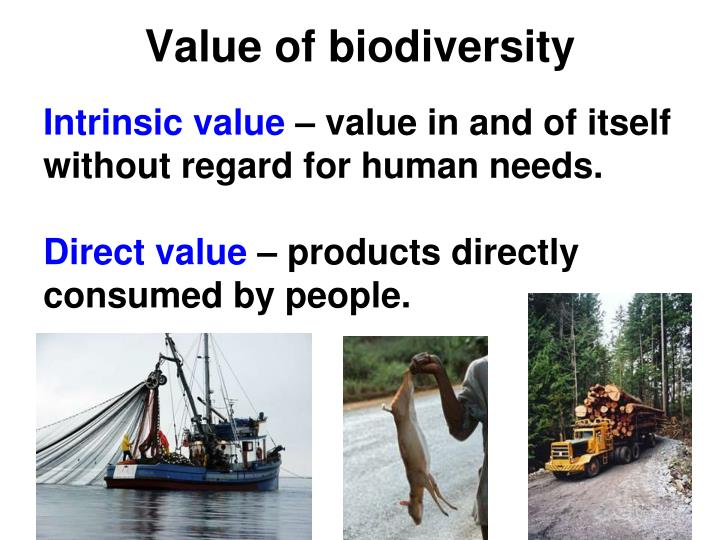 Value of biodiversity