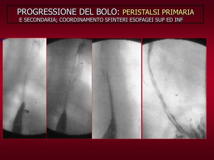 PROGRESSIONE DEL BOLO: