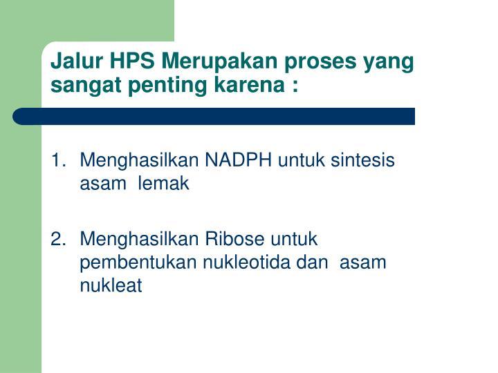Jalur HPS Merupakan proses yang sangat penting karena :