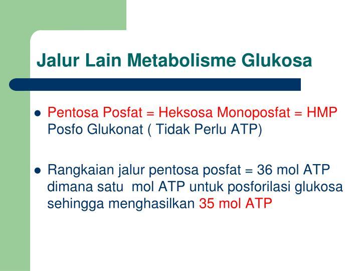 Jalur Lain Metabolisme Glukosa