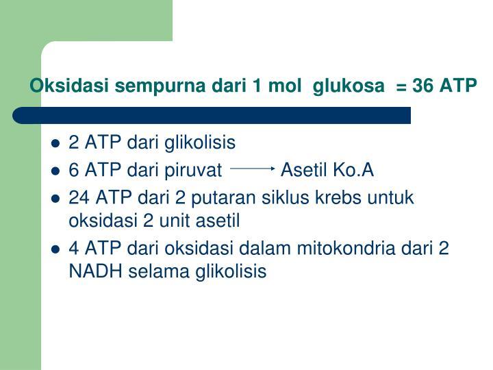 Oksidasi sempurna dari 1 mol  glukosa  = 36 ATP